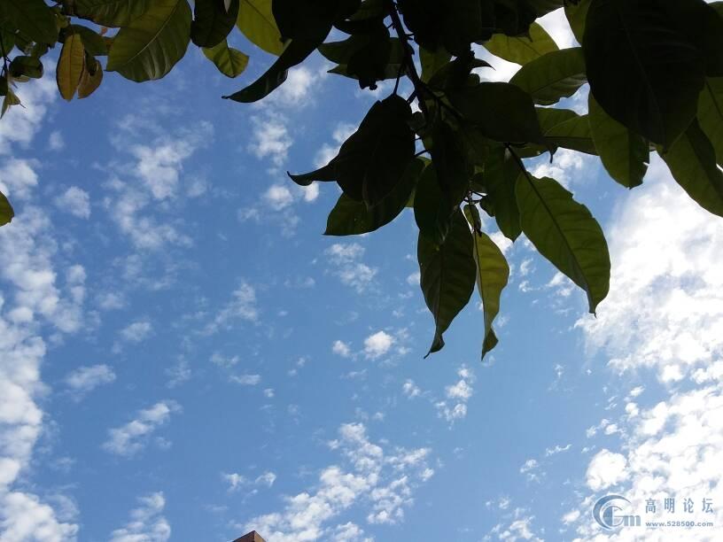 蓝蓝天空高挂我的梦图片